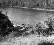 Lord Beaverbrook in a canoe on the Restigouche River.